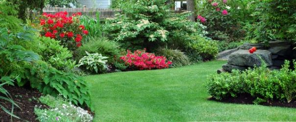 side_garden_.jpg