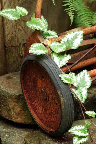 old_wheel.jpg