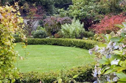 november_07_garden.jpg