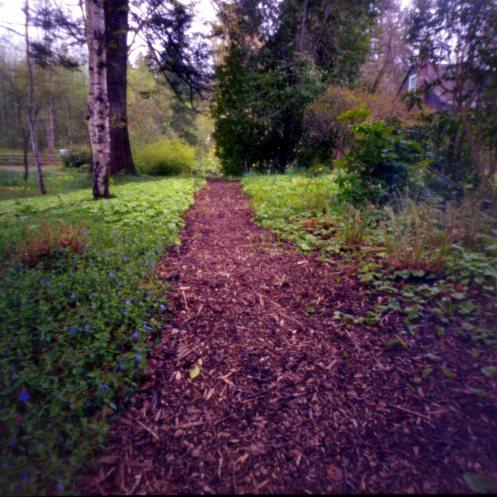 Pinhole Path